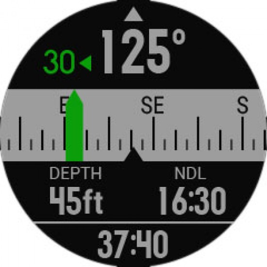 Garmin Descent Mk1 - Titanium Band