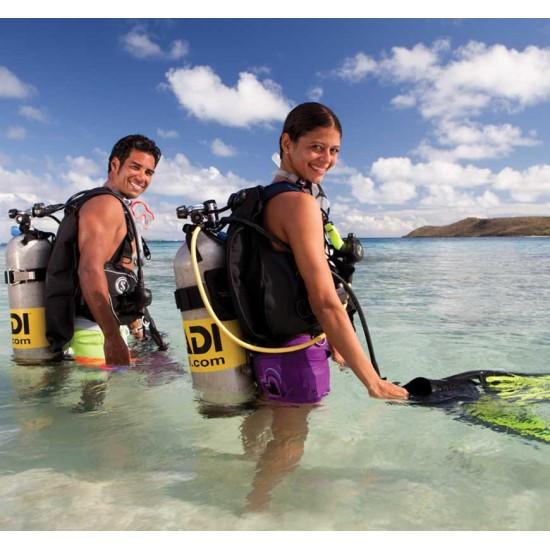 PADI Discover Local Diving